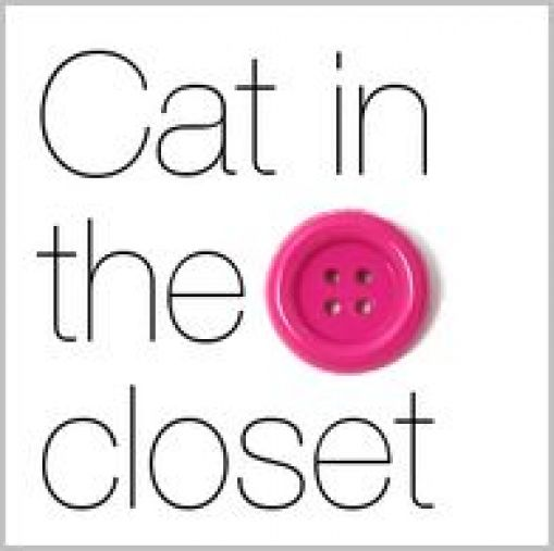 Cat.in.the.closet