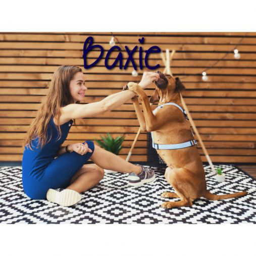 Baxie