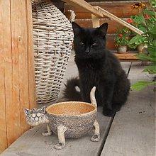 Pre zvieratká - Miska pro kočku - 3774205_