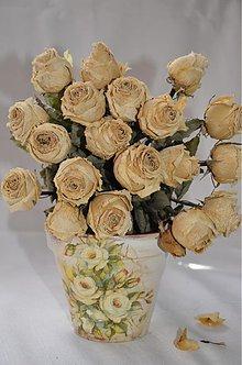 Nádoby - White roses - 3828588_