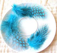 Suroviny - AKCIA !!! Pierka z prepeličky,väčšie,5-12 cm,tyrkys / 5 párov - 3856434_