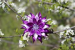 Ozdoby do vlasov - Fialový kvet do vlasov - 3865106_
