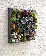 Socha - kvetináč ako obraz - 3886575_