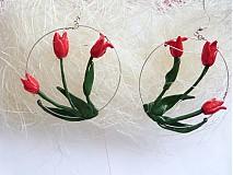 - Rozkvitnuté tulipány - 3973569_