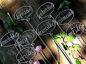 Dekorácie - bylinka 1 ks - 3981699_