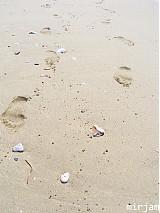 Fotografie - Pláž IV. - 3999021_
