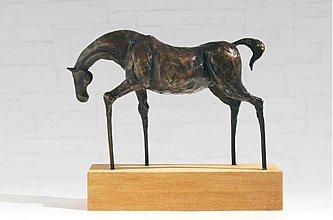 Socha - Koník - bronzová socha - originál - 4010910_