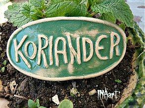 Dekorácie - Zápich Koriander - posledné ks - 4011898_