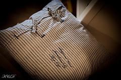 """Úžitkový textil - Vankúšik """"Nautical style"""" - 4024781_"""