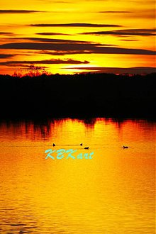 Fotografie - Kačky pri západe slnka - 4046233_