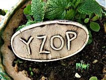 Dekorácie - Zápich Yzop - posledne ks - 4060125_