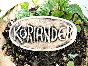 Dekorácie - Zápich Koriander - posledné ks - 4060202_