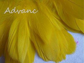 Suroviny - Kačacie žlté svetlé R7 - 4075799_