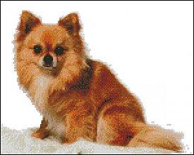 Návody a literatúra - Chihuahua - predloha na vyšívanie - 4112561_