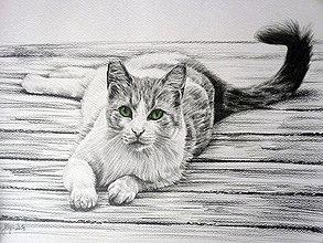 Kresby - Green - print - 4207570_