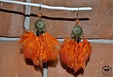 - Orange Bird - 4219428_