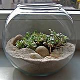 Nádoby - Skleněná koule AERÁRIUM - 4224793_
