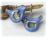 Náušnice - Vtáčiky...modré so sklom a platinou - 4259930_