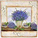 Obrázky - Provence levande - 4265325_