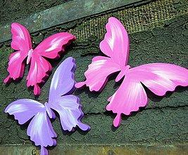 Magnetky - motýle - 4289436_