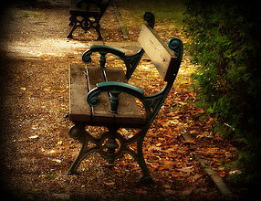 Fotografie - Lavička v parku - 4292692_