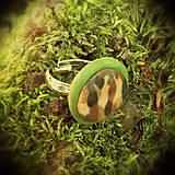 Prstene - Z lásky k prírode - prsteň - 4302397_