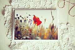 Papiernictvo - Otváracia pohľadnica - maková - 4309544_