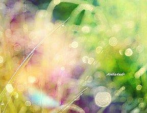 Grafika - bublinky - 4332492_