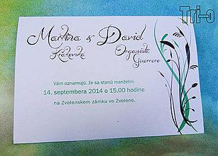 Papiernictvo - Martina&David V. - 4392417_