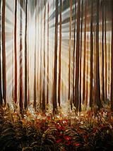 Obrazy - Lights - 4396094_