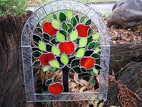 Obrazy - Jablíčko červené, odrůda - skleněné - 4403659_