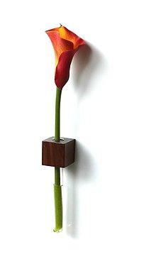 Nádoby - Orechové drevo - magnetka - 4403962_