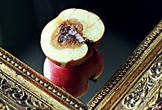 Fotografie - na vine je jablko... - 4424072_