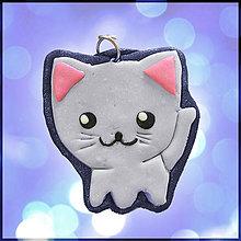 Kľúčenky - Zvláštna mačka - 4472262_