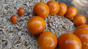 Sady šperkov - Zatúlané pomaranče sada 2v1 - 4479477_