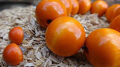 Sady šperkov - Zatúlané pomaranče sada 2v1 - 4479474_