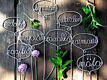 Dekorácie - Zápich - bylinky sada - 4501240_