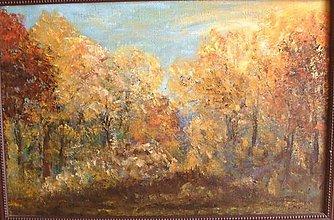 Obrazy - Jesenný les - 4523179_