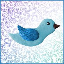 Magnetky - Vtáčik - magnetka - 4556708_
