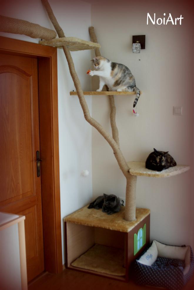No a aby teda našu domácnosť neobývali len mačky 56de72a8773