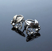Náušnice - Silver earrings - 4618407_