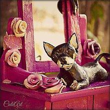 Krabičky - Šperkovnica s figúrkou čivavy podľa fotografie - 4640608_