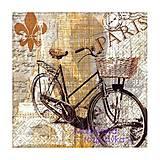 - retro bicykel - 4643468_
