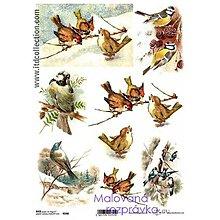 Papier - ryžový papier sýkorky a vrabce - 4669783_