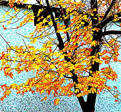 Fotografie - Jesenná pohoda - 4687324_