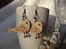 Náušnice - ľudovie vtáčatá - 4713677_
