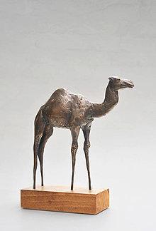 Socha - Ťava - bronzová socha - originál - 4724584_
