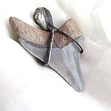 Šperky - Extra veľký zub žraloka - cínovanie - 4728795_