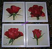 Obrázky - Ruža 4 x inak vyberte si - 4860375_