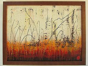 Obrazy - Vypaľovanie trávy - 4881607_